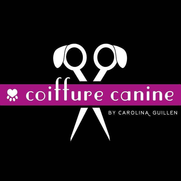 Coiffure canine